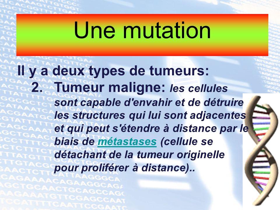 Une mutation Il y a deux types de tumeurs: