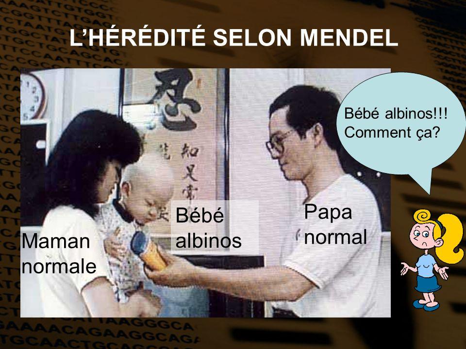 L'HÉRÉDITÉ SELON MENDEL