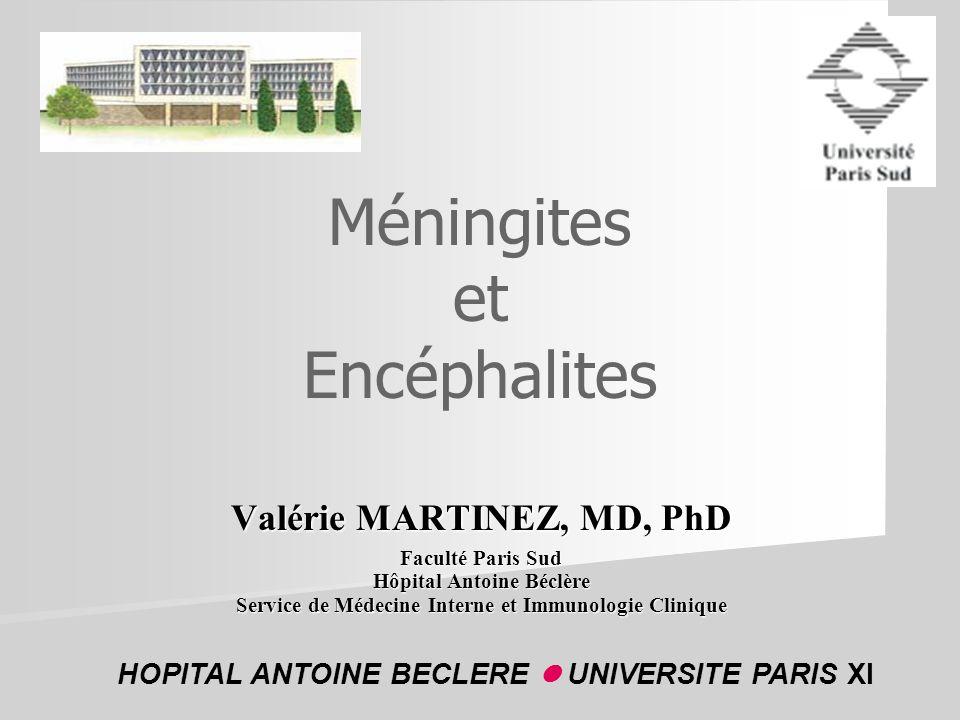Méningites et Encéphalites