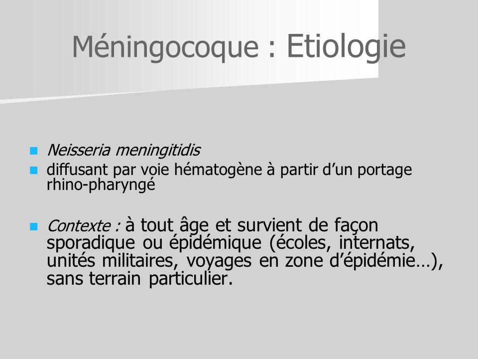 Méningocoque : Etiologie