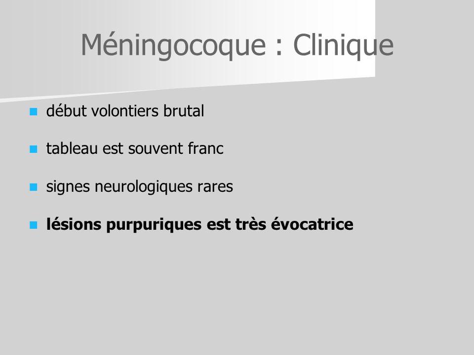 Méningocoque : Clinique
