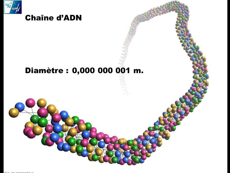 Chaîne d'ADN Diamètre : 0,000 000 001 m.