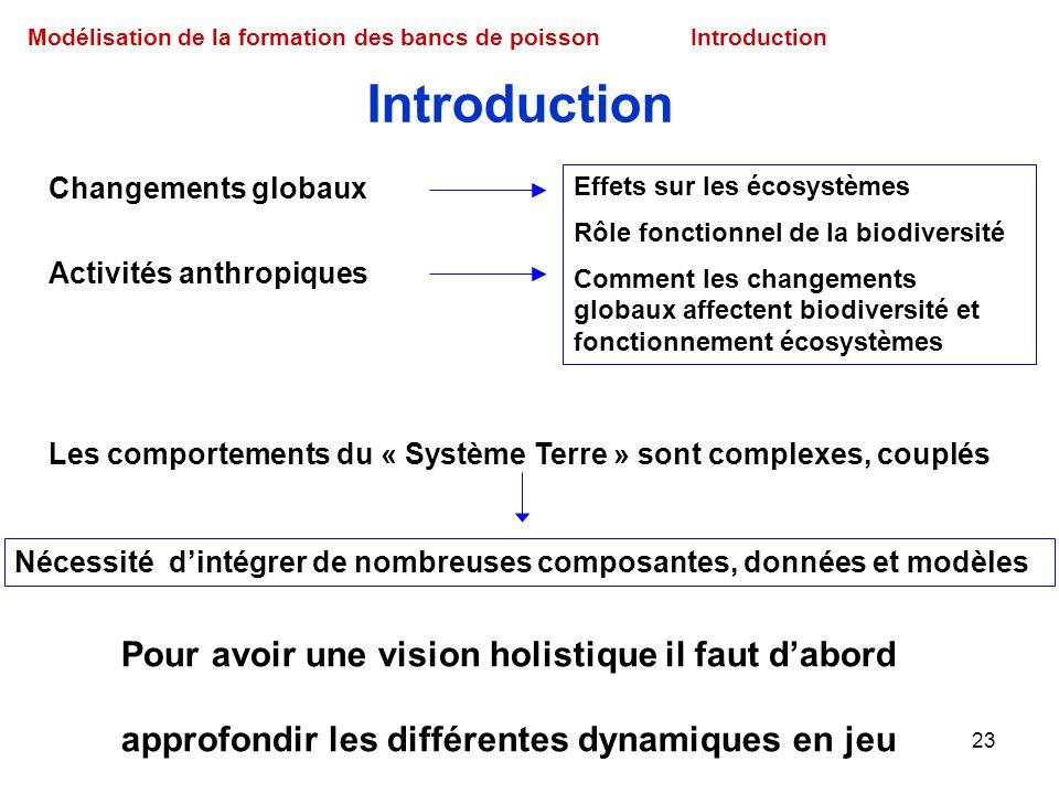 Introduction Pour avoir une vision holistique il faut d'abord