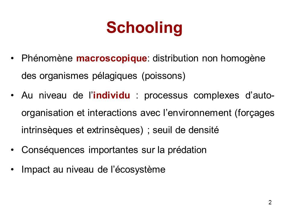 Schooling Phénomène macroscopique: distribution non homogène des organismes pélagiques (poissons)