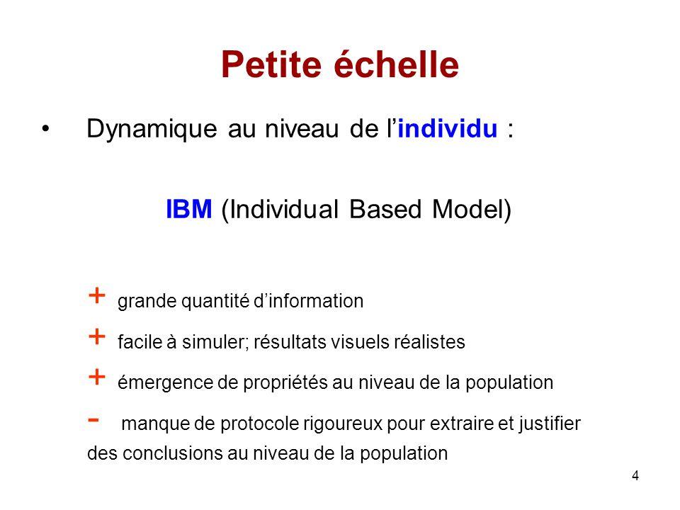 Petite échelle Dynamique au niveau de l'individu :