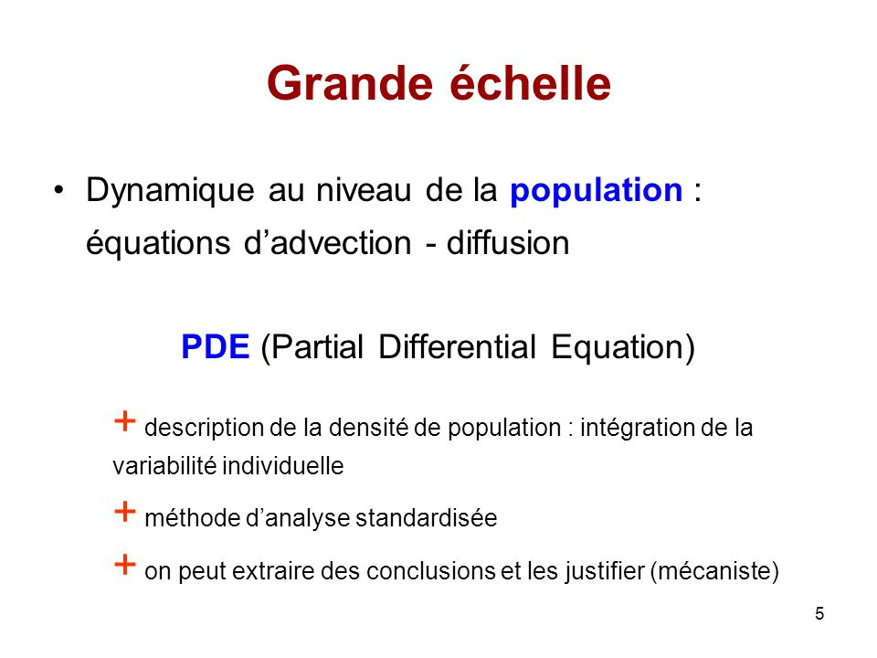 PDE (Partial Differential Equation)