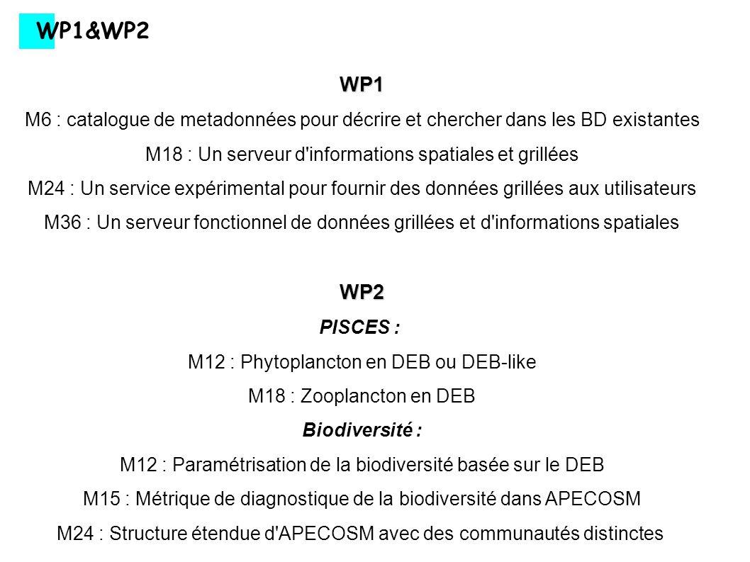 WP1&WP2 WP1. M6 : catalogue de metadonnées pour décrire et chercher dans les BD existantes. M18 : Un serveur d informations spatiales et grillées.