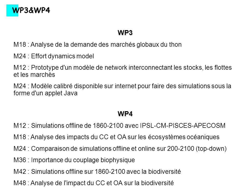 WP3&WP4 WP3. M18 : Analyse de la demande des marchés globaux du thon. M24 : Effort dynamics model.