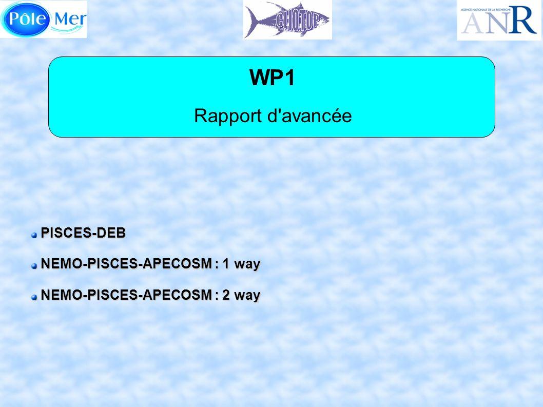 WP1 Rapport d avancée PISCES-DEB NEMO-PISCES-APECOSM : 1 way