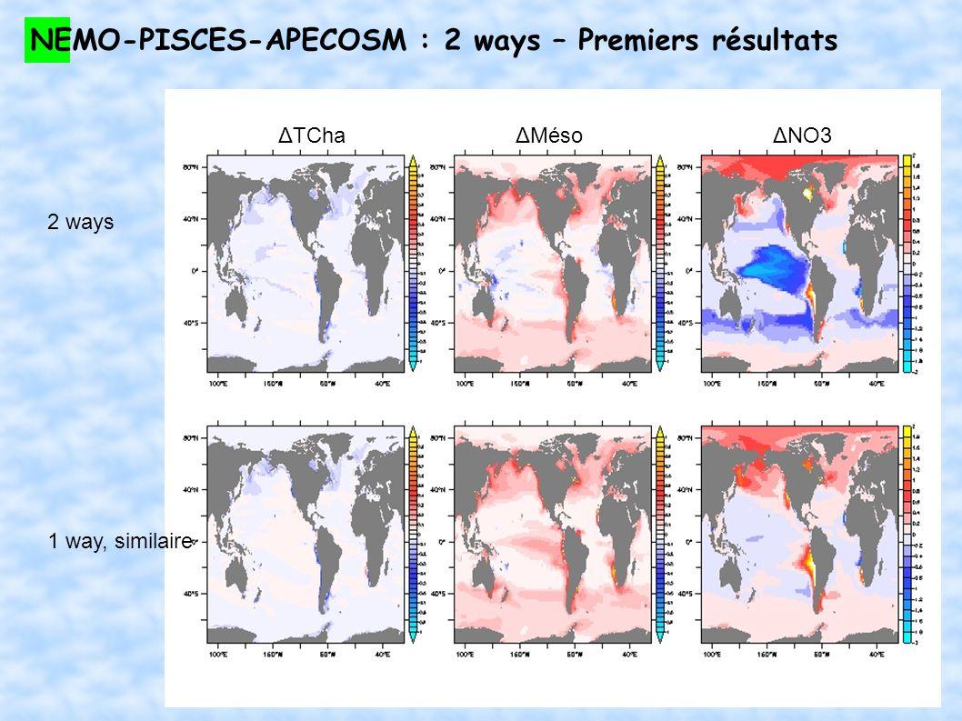 NEMO-PISCES-APECOSM : 2 ways – Premiers résultats