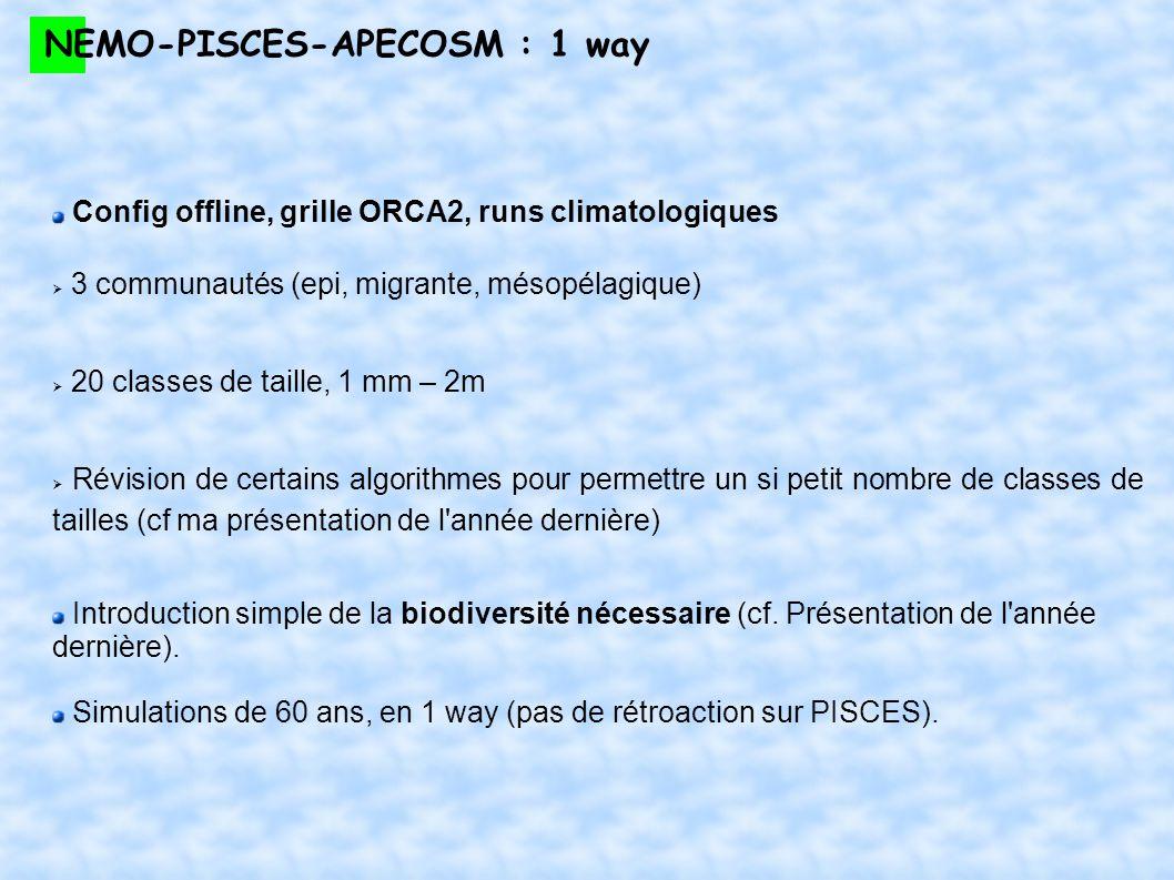 NEMO-PISCES-APECOSM : 1 way