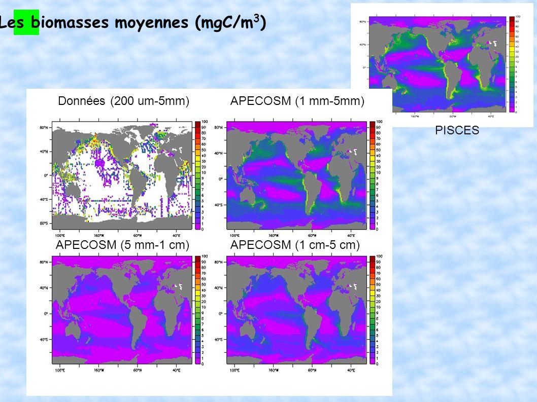 Les biomasses moyennes (mgC/m3)