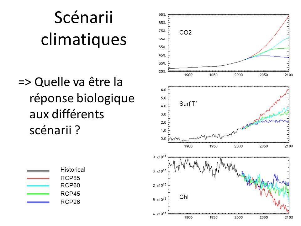 Scénarii climatiques CO2. => Quelle va être la réponse biologique aux différents scénarii Surf T˚