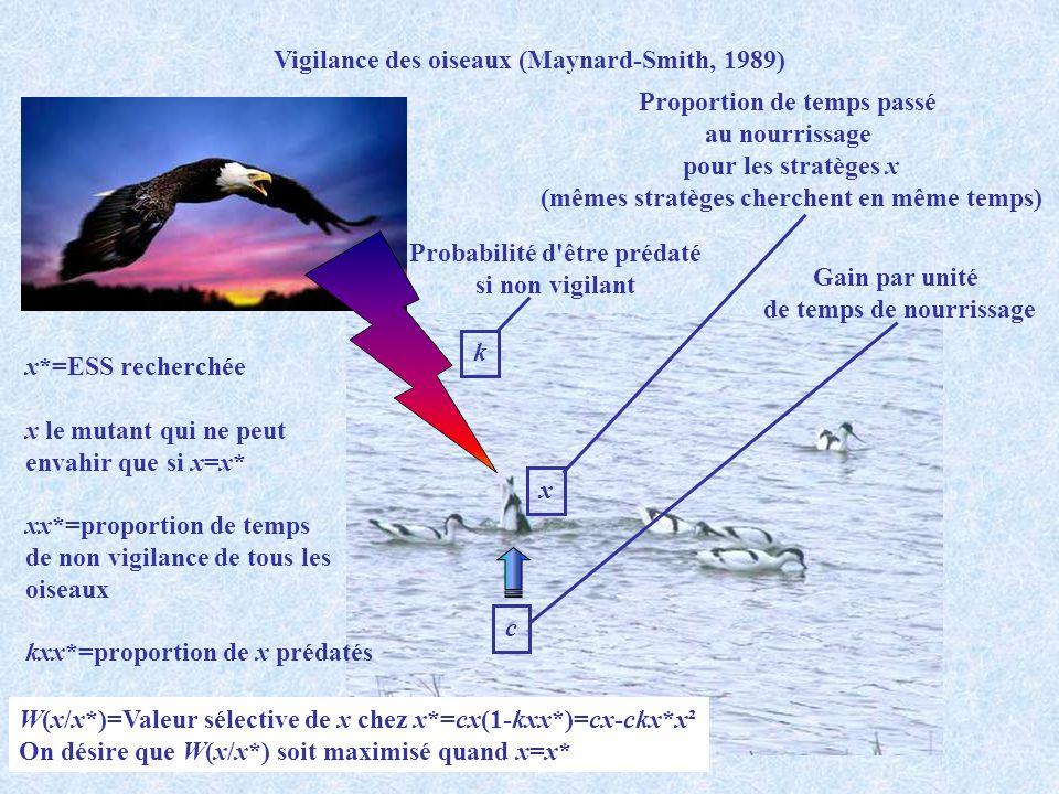 Vigilance des oiseaux (Maynard-Smith, 1989)