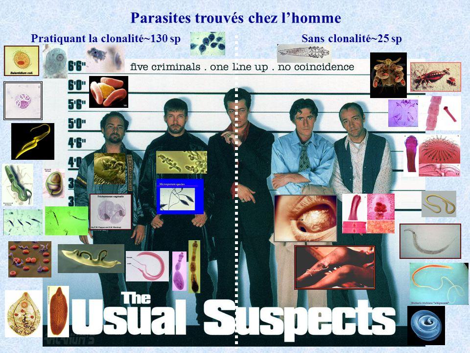 Parasites trouvés chez l'homme