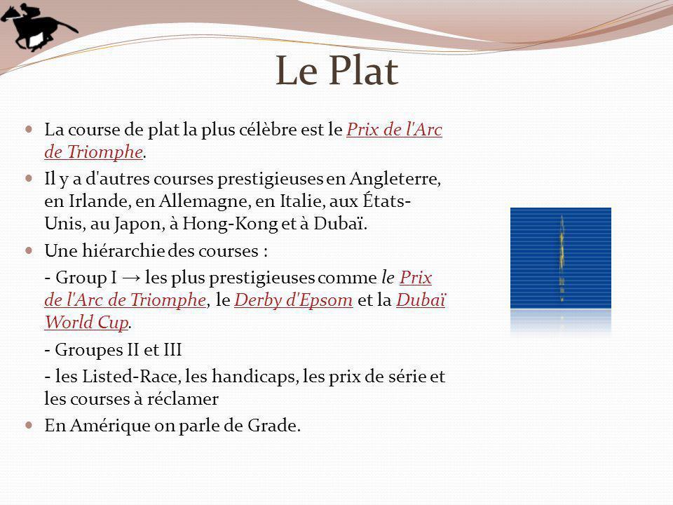 Le Plat La course de plat la plus célèbre est le Prix de l Arc de Triomphe.