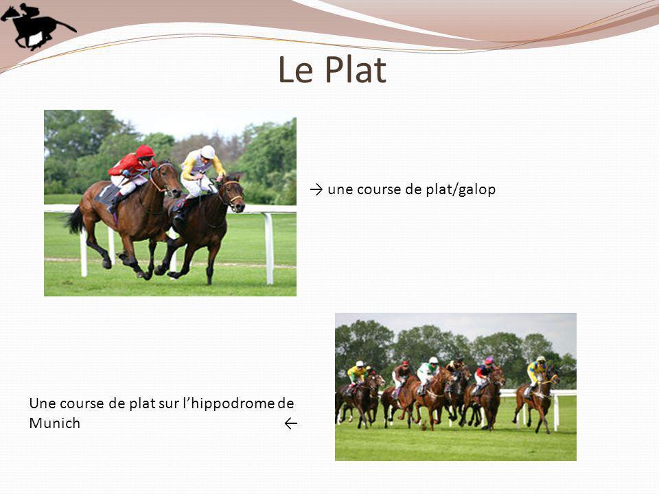 Le Plat → une course de plat/galop