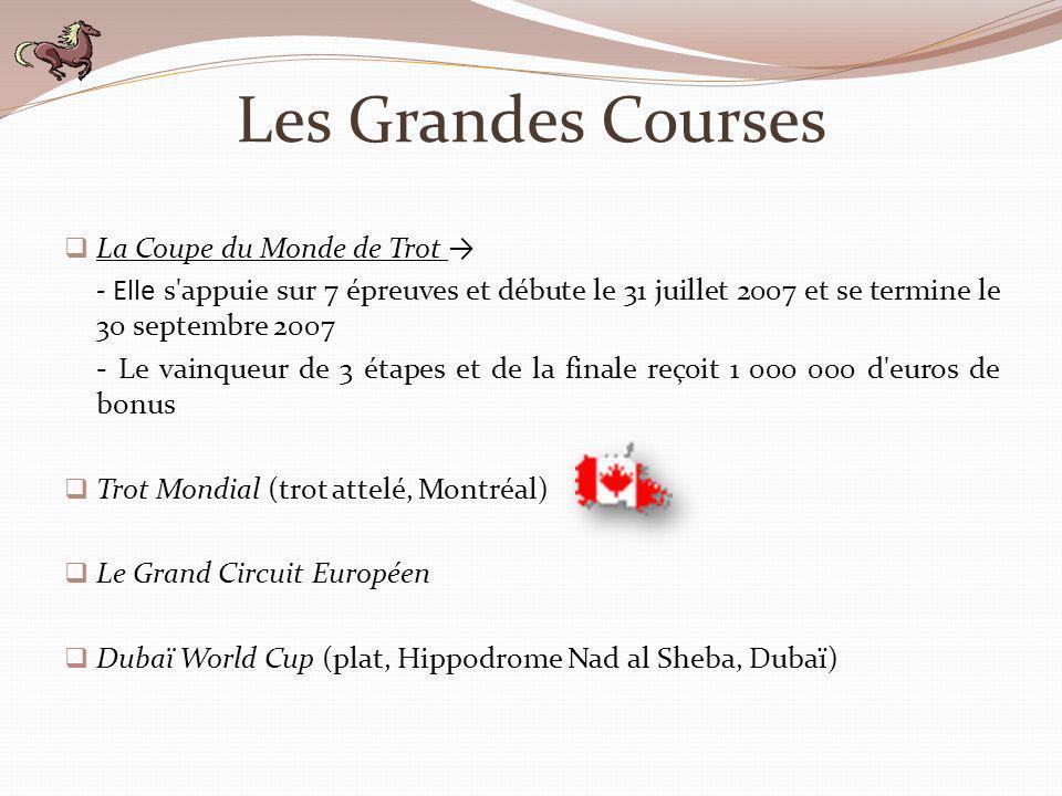 Les Grandes Courses La Coupe du Monde de Trot →