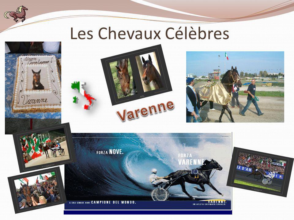 Les Chevaux Célèbres Varenne