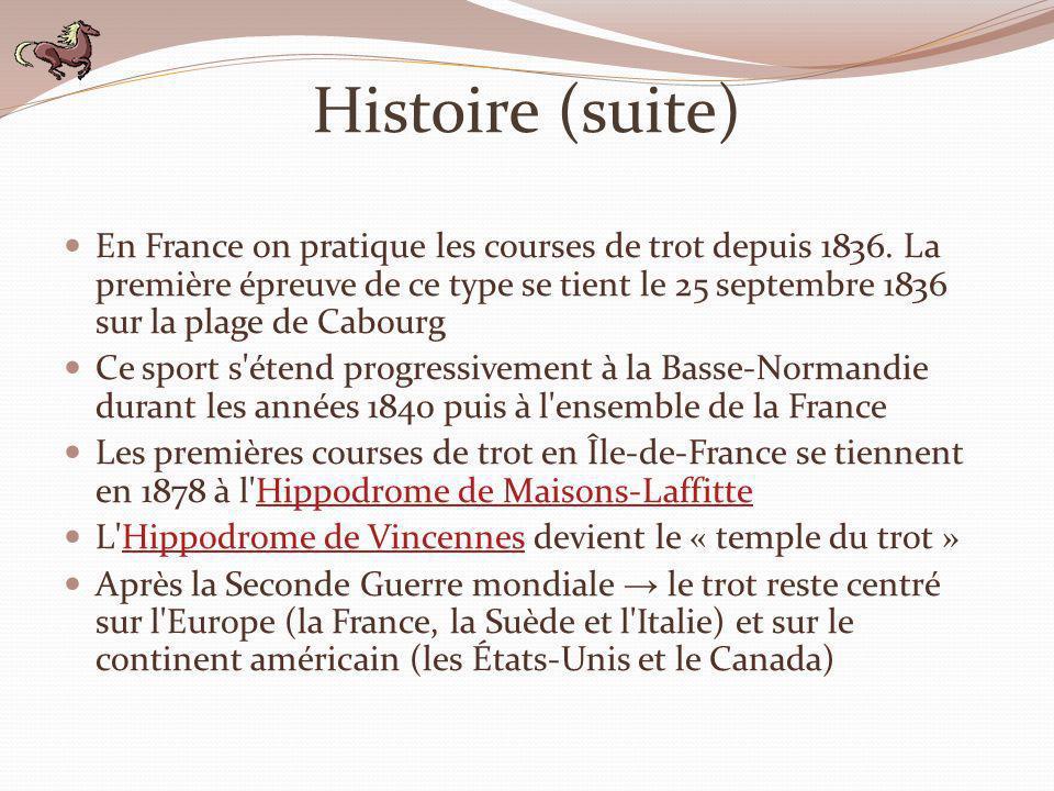 Histoire (suite)