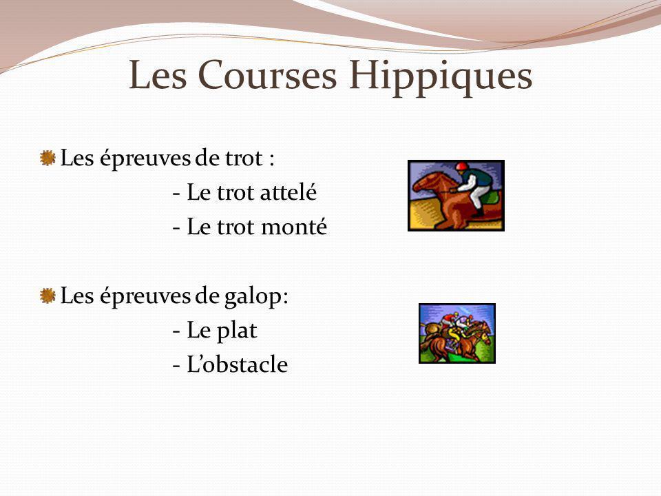 Les Courses Hippiques Les épreuves de trot : - Le trot attelé