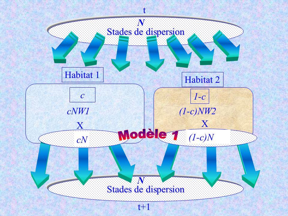 Modèle 1 t Stades de dispersion N Habitat 1 Habitat 2 c 1-c cNW1