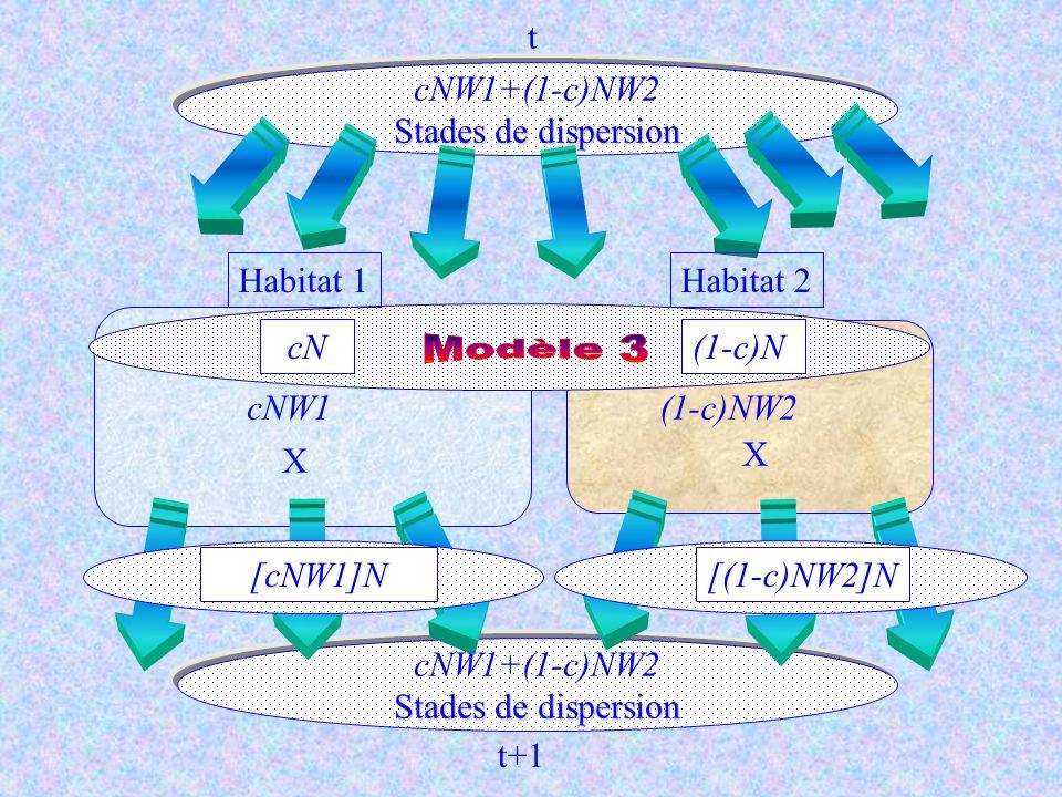 Modèle 3 t cNW1+(1-c)NW2 Stades de dispersion Habitat 1 Habitat 2 cN