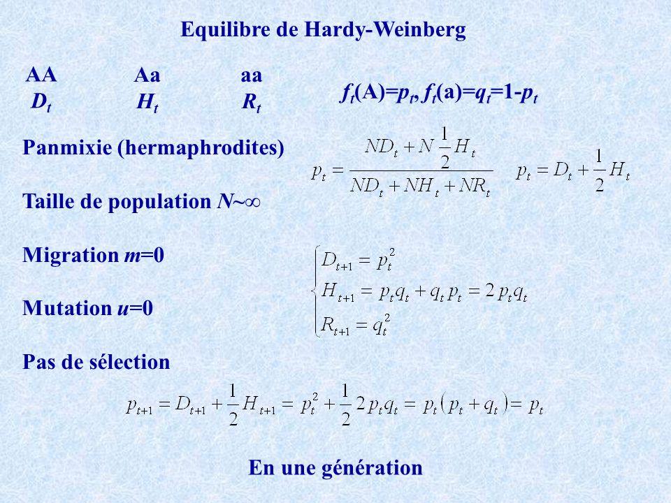 ft(A)=pt, ft(a)=qt=1-pt