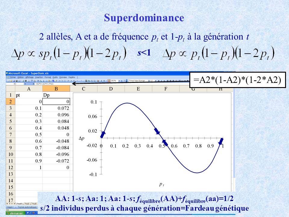 Superdominance 2 allèles, A et a de fréquence pt et 1-pt à la génération t. s<1. =A2*(1-A2)*(1-2*A2)