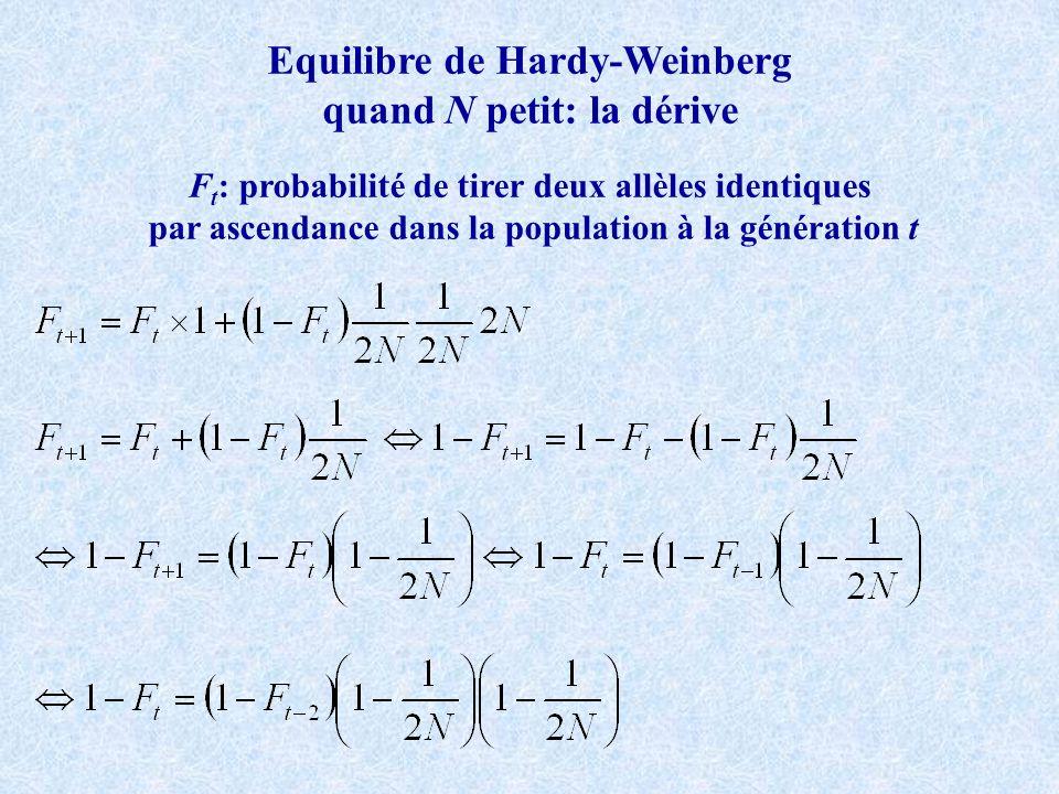 Equilibre de Hardy-Weinberg quand N petit: la dérive