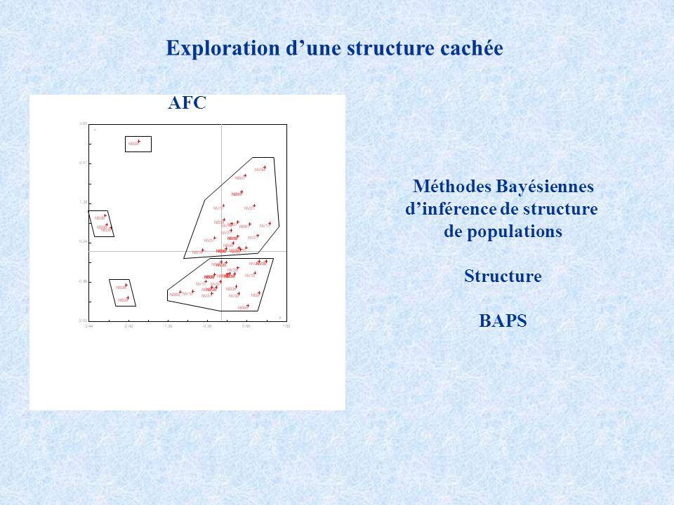 Exploration d'une structure cachée d'inférence de structure