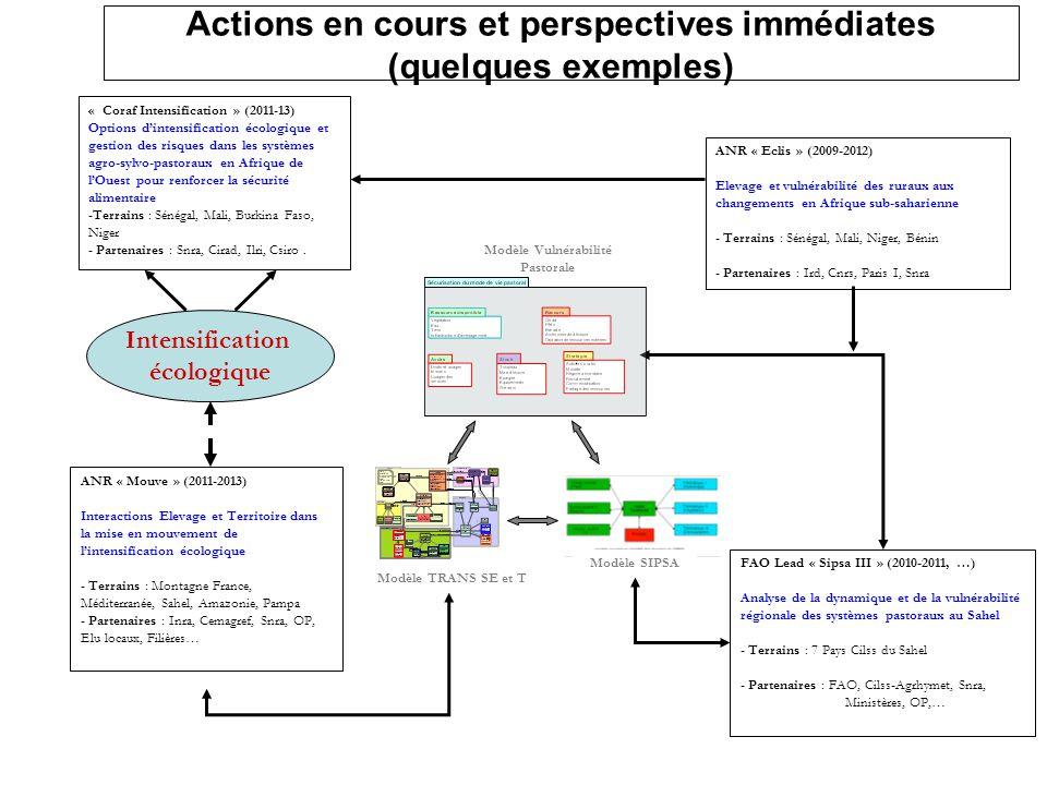 Actions en cours et perspectives immédiates (quelques exemples)