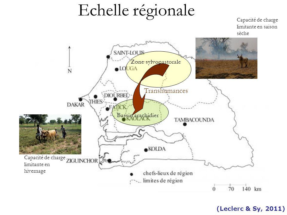 Echelle régionale Transhumances Zone sylvopastorale Bassin arachidier