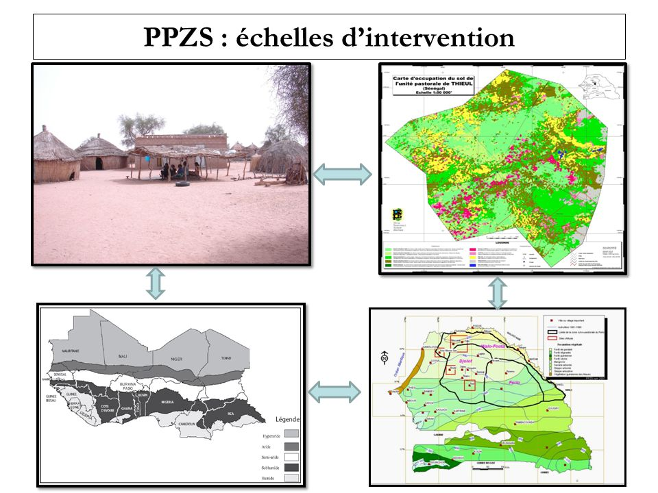 PPZS : échelles d'intervention