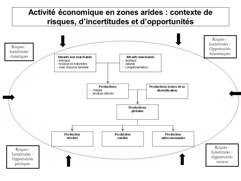 Activité économique en zones arides : contexte de risques, d'incertitudes et d'opportunités