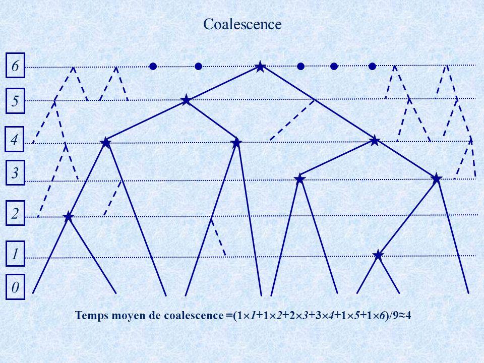 Temps moyen de coalescence =(11+12+23+34+15+16)/9≈4