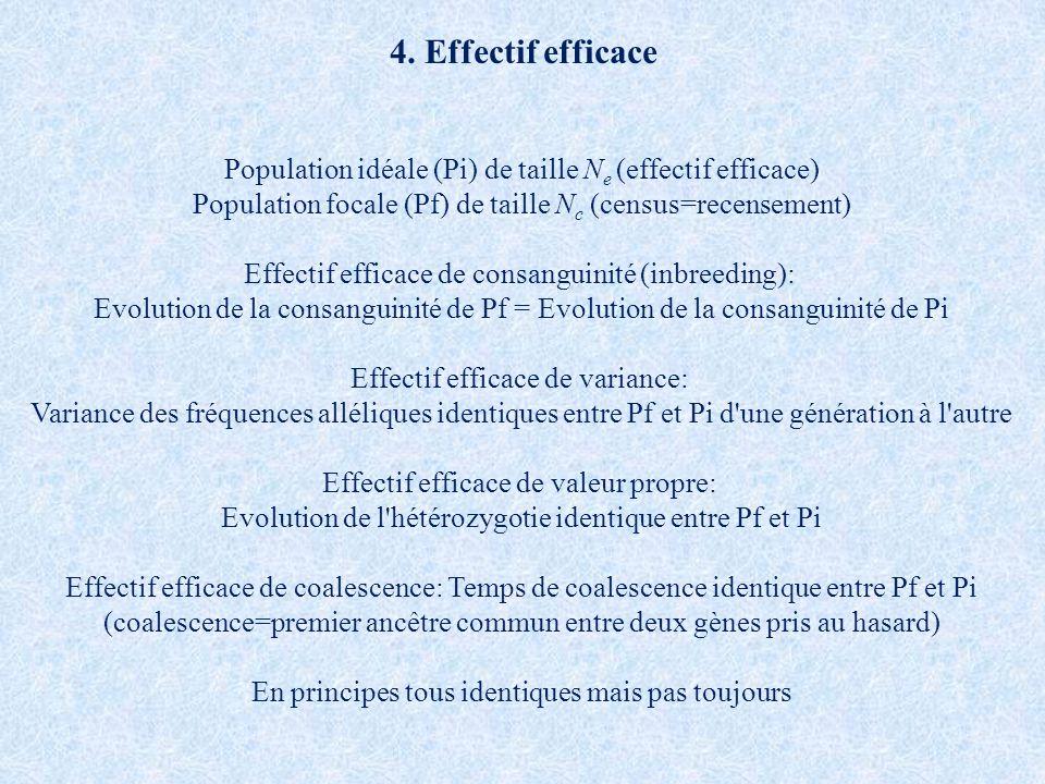 4. Effectif efficace Population idéale (Pi) de taille Ne (effectif efficace) Population focale (Pf) de taille Nc (census=recensement)