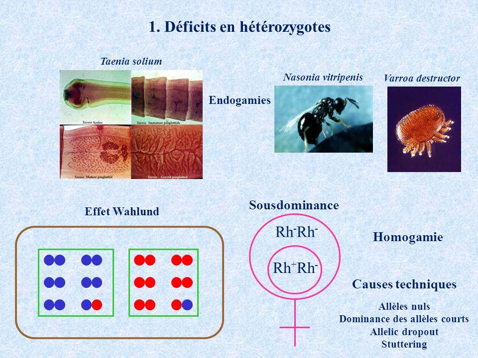1. Déficits en hétérozygotes Dominance des allèles courts