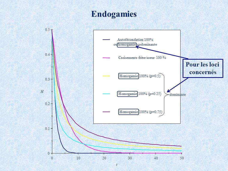 Endogamies Pour les loci concernés 0.1 0.2 0.3 0.4 0.5 10 20 30 40 50