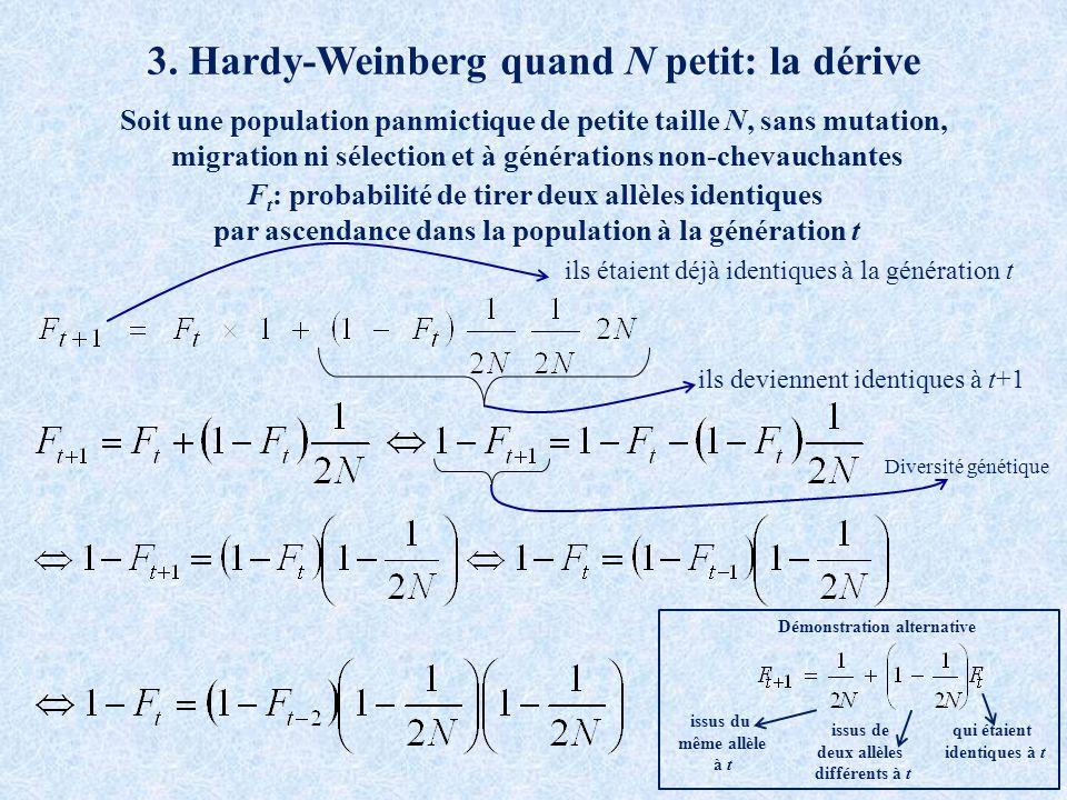 3. Hardy-Weinberg quand N petit: la dérive