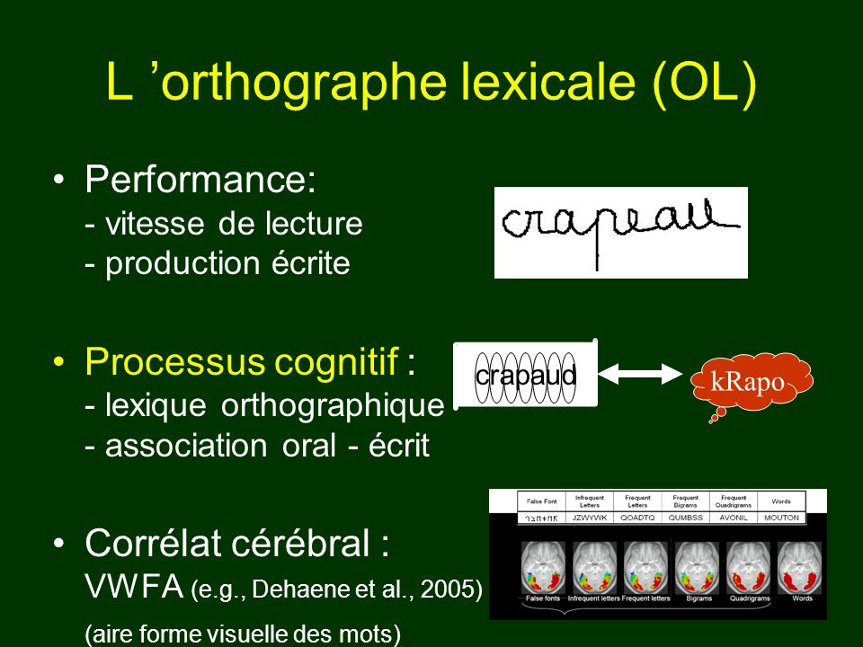 L 'orthographe lexicale (OL)