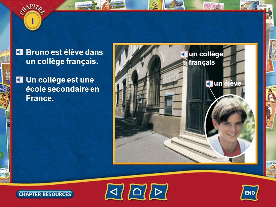 Bruno est élève dans un collège français.