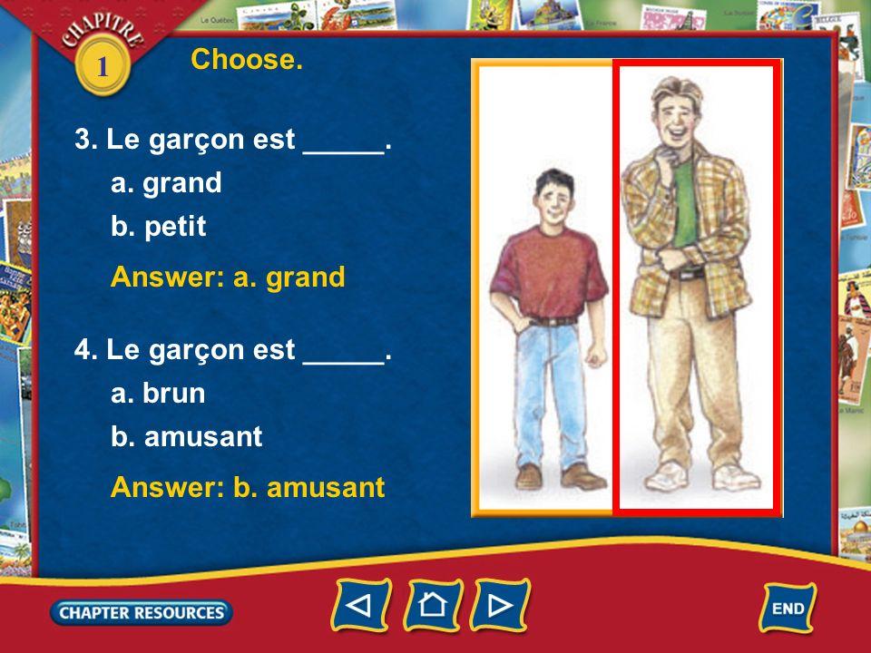 Choose. 3. Le garçon est _____. a. grand. b. petit. Answer: a. grand. 4. Le garçon est _____. a. brun.