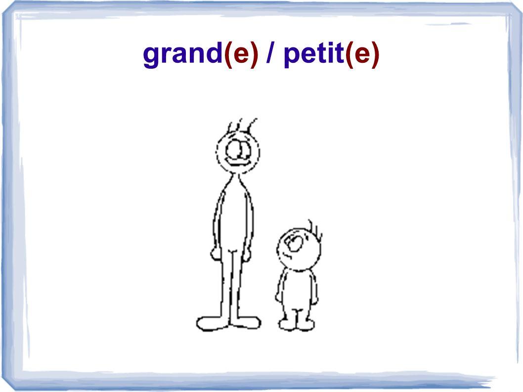 grand(e) / petit(e)
