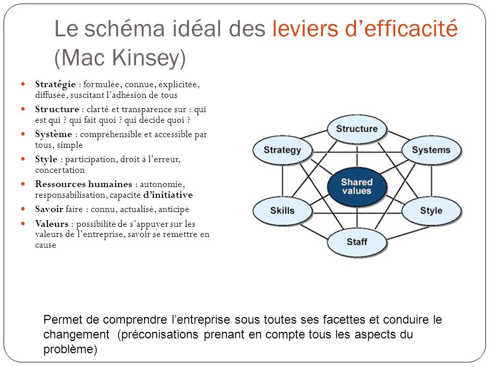 Le schéma idéal des leviers d'efficacité (Mac Kinsey)