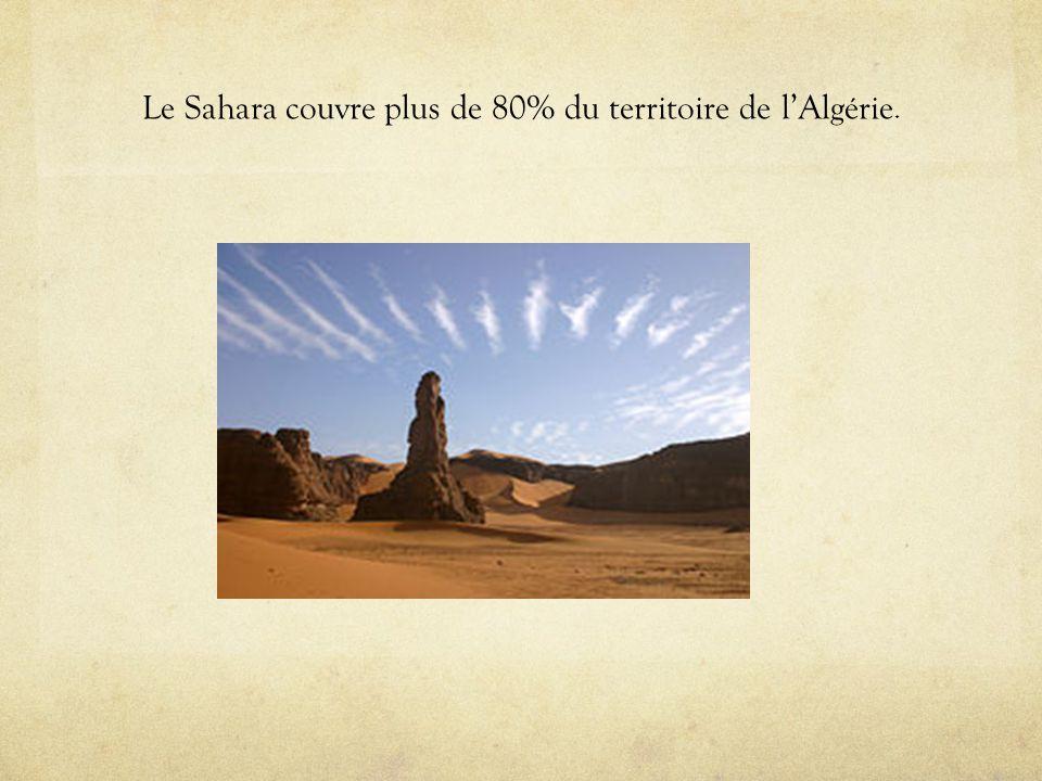 Le Sahara couvre plus de 80% du territoire de l'Algérie.