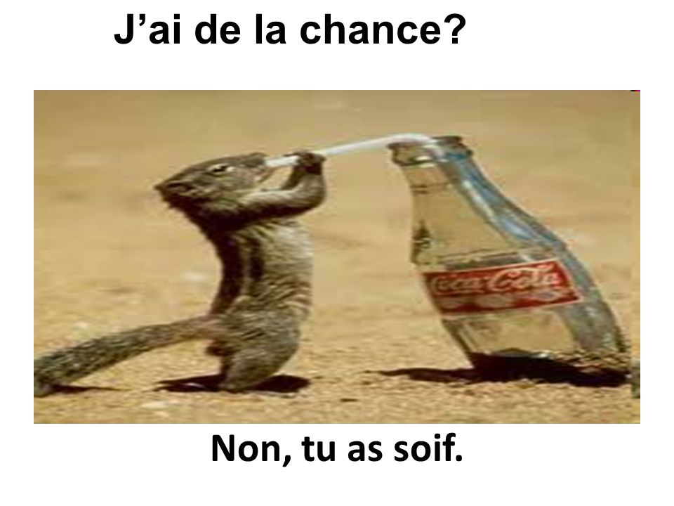 J'ai de la chance Non, tu as soif.