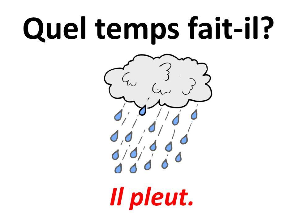 Quel temps fait-il Il pleut.