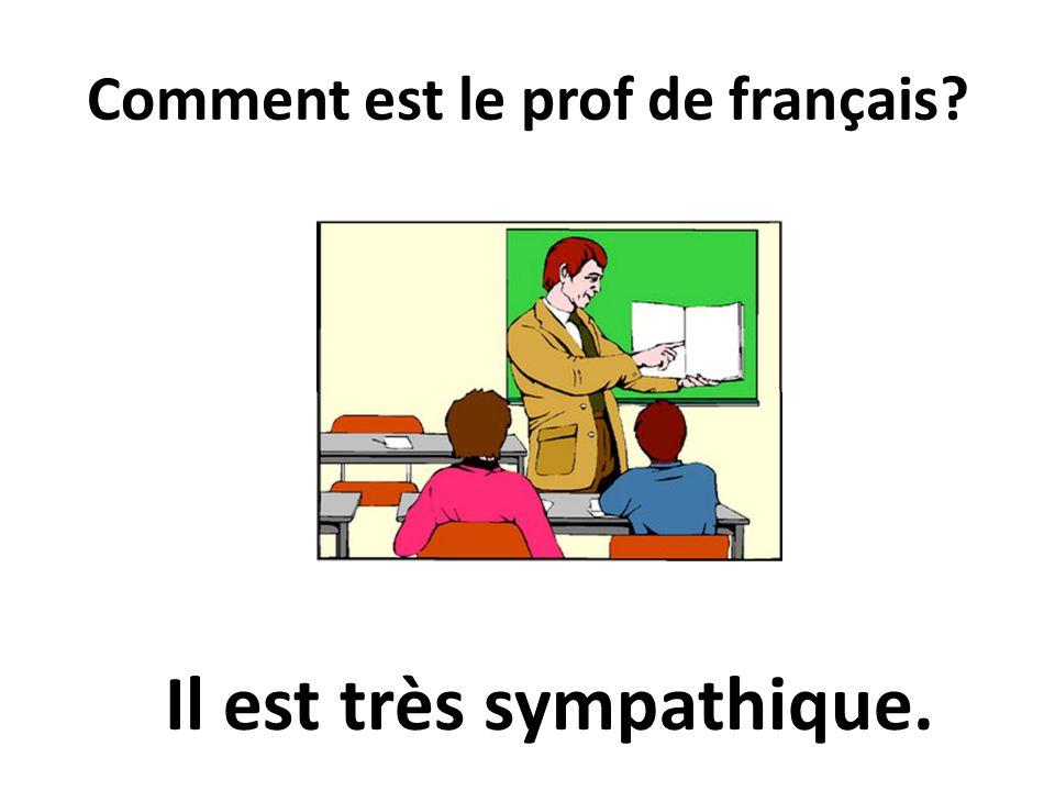 Comment est le prof de français