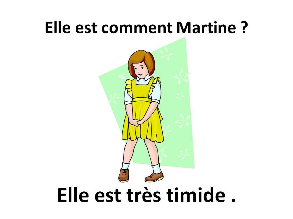 Elle est comment Martine